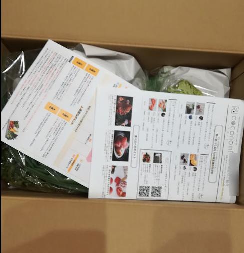 野菜嫌いの子供のためにココノミを注文して開封